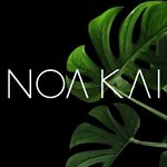 @noakaiswimwear's profile picture on influence.co