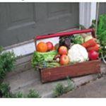 @gardento_doorstep_organics's profile picture on influence.co