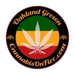 @cannabisonfire_distribution's profile picture