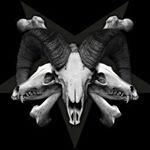 @skullsnbonesgram's profile picture on influence.co