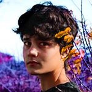 @kenai.white's profile picture on influence.co