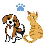 @mypawprints's profile picture on influence.co