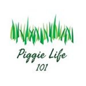 @piggielife101's profile picture on influence.co