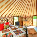 @swallowtailsglamping's profile picture