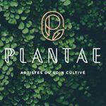 @plantae.care's profile picture