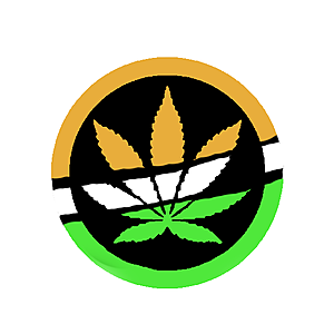 @stonerindia's profile picture on influence.co