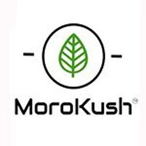 @morokush's profile picture
