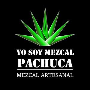 @yosoymezcalpachuca's profile picture on influence.co