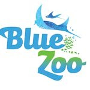 @bluezoookc's profile picture