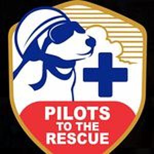 @pilotstotherescue's profile picture