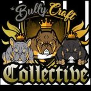 @thebullycraftcollective's profile picture