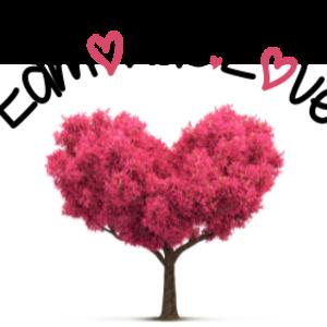 @edmonds.love's profile picture