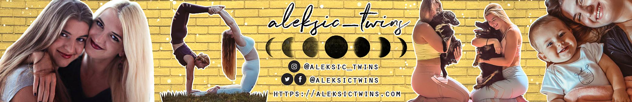 Aleksic twins banner