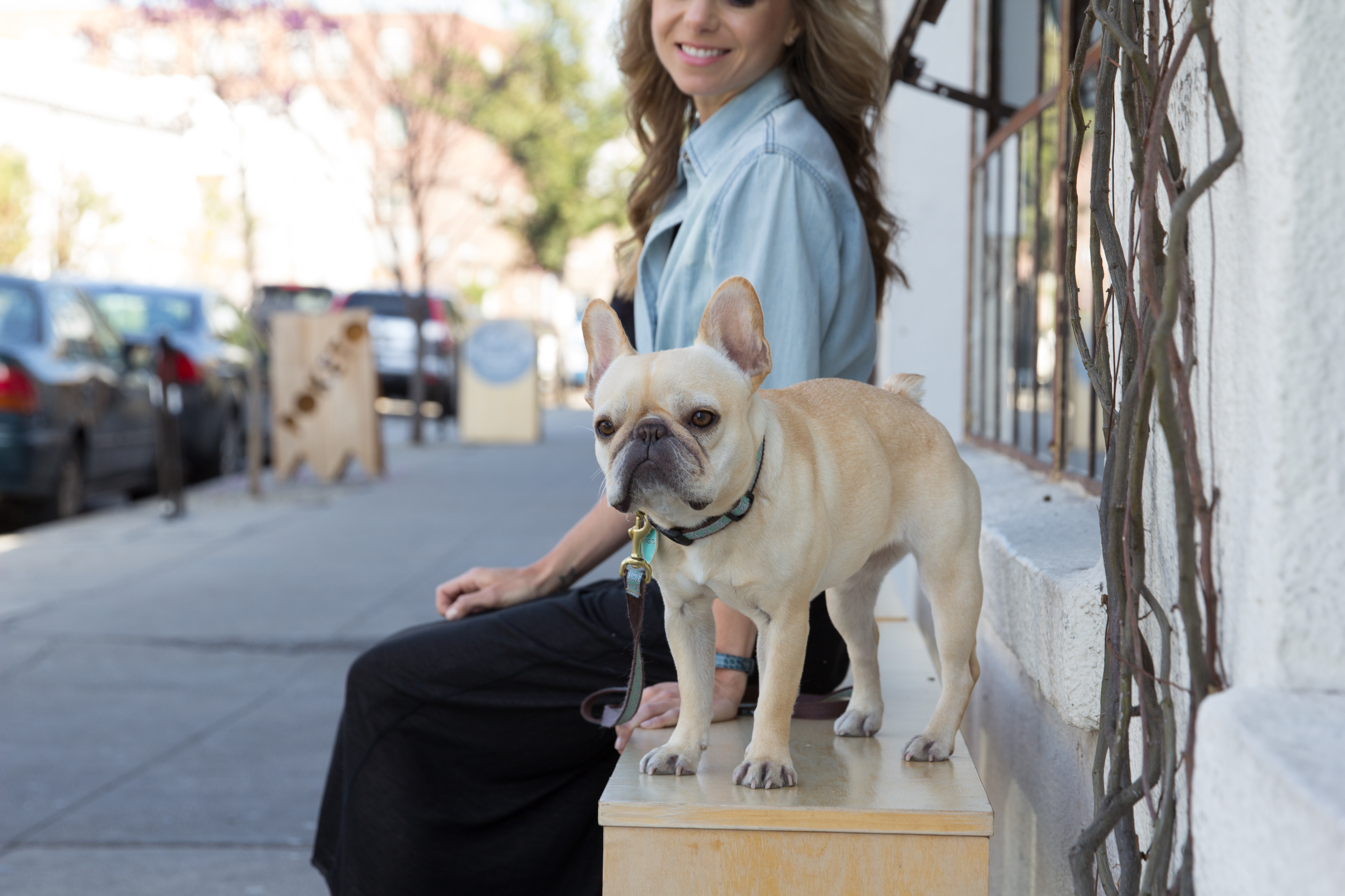 Lfs dog owner outsidebench