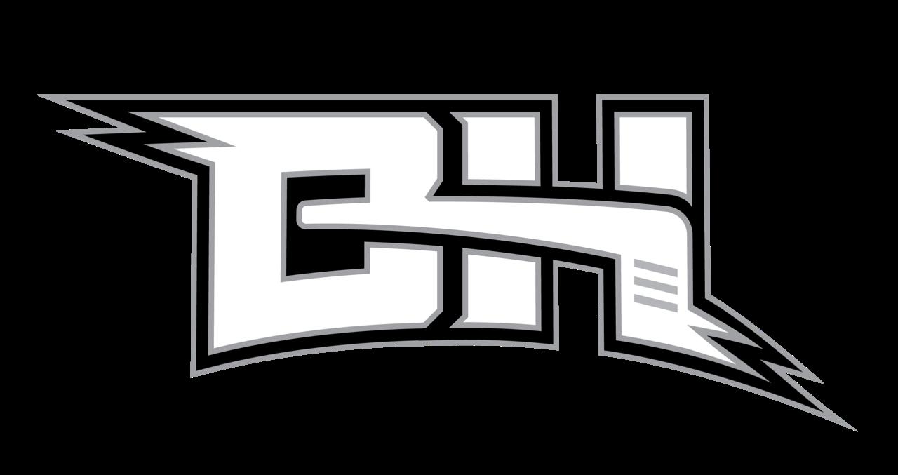 Barnyardhockeyoutline