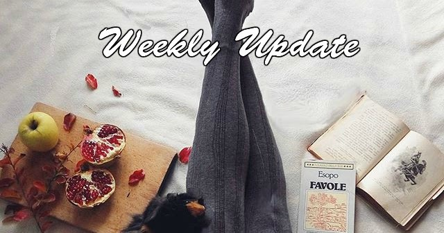 @_crimsoncloud_'s cover photo for 'Weekly update #4 & Rosegal big sales!'