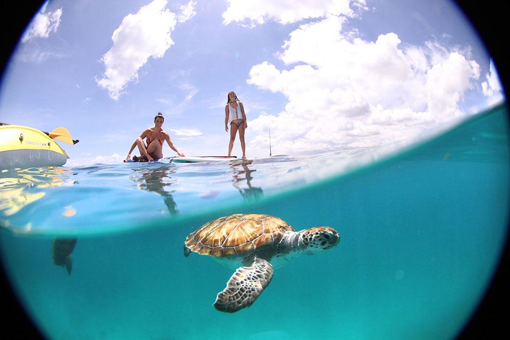 @jujunatripblog's cover photo for 'Guia de Viagem sobre Barbados: o que fazer, onde ir, as melhores praias'