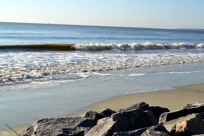 @lovesmytwoboys's cover photo for 'The King and Prince Beach & Golf Resort on St. Simons Island'