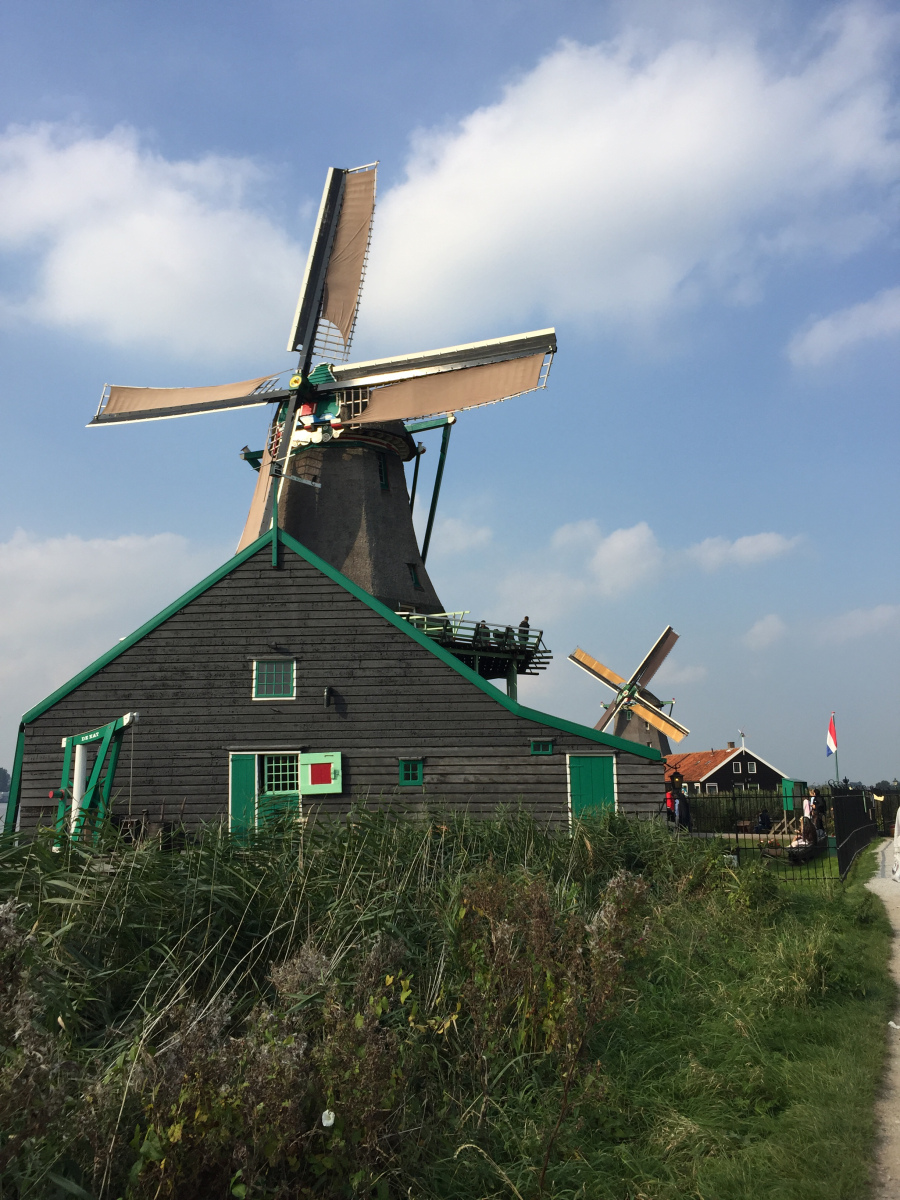 @leilaspassport's cover photo for 'Amsterdam Windmills Tour by Viator'