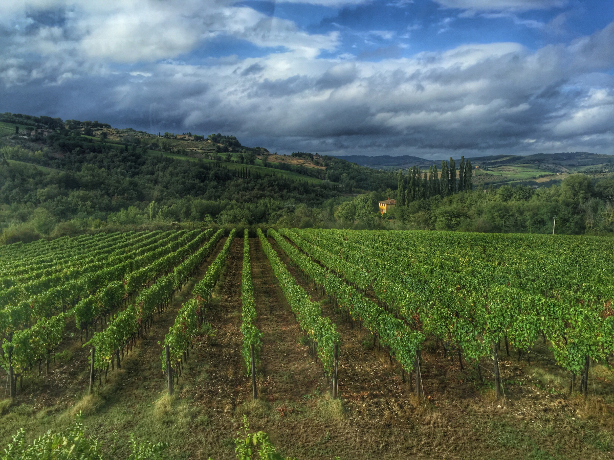 @leilaspassport's cover photo for 'A Day in Tuscany'