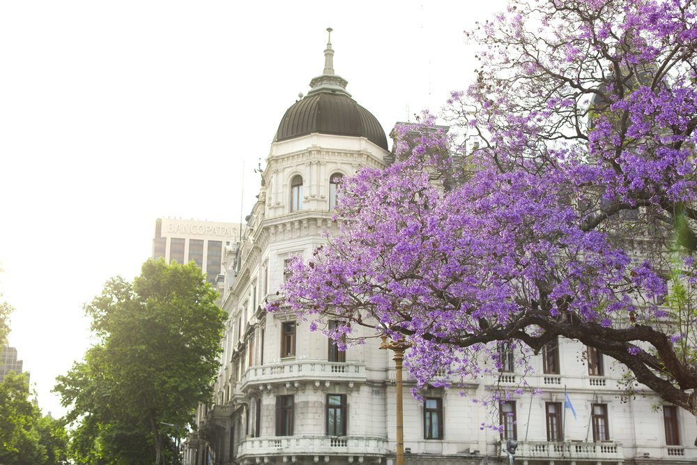 @niki_csanyi's cover photo for 'Springtime in Buenos Aires, what a wonderful first encounter with Argentina.'