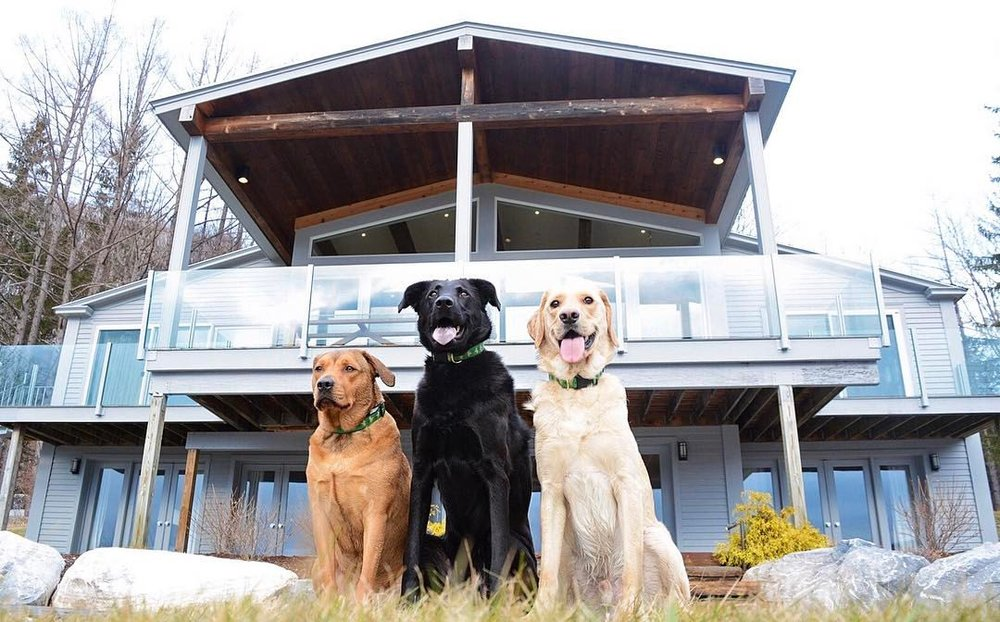 @knoxandbear's cover photo for 'A HomeAway Experience VT Style!'