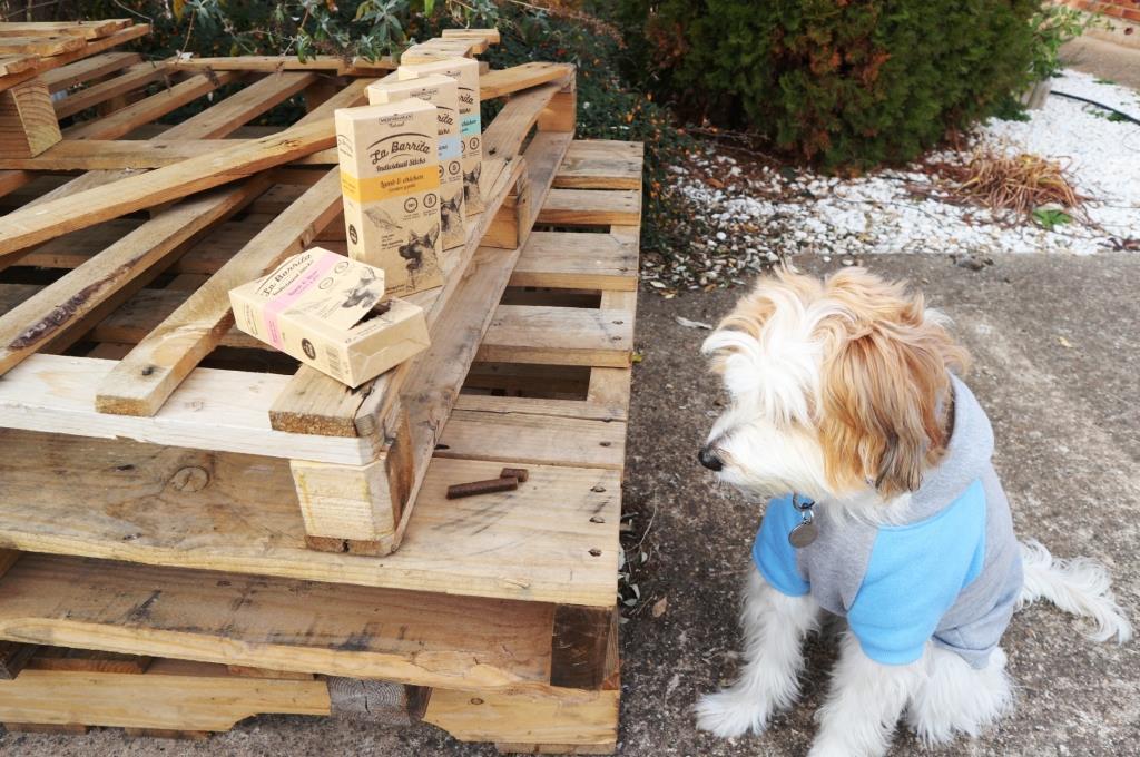 @lucca.laloca's cover photo for 'Mediterranean Natural, la mejor forma de premiar a tu perro'