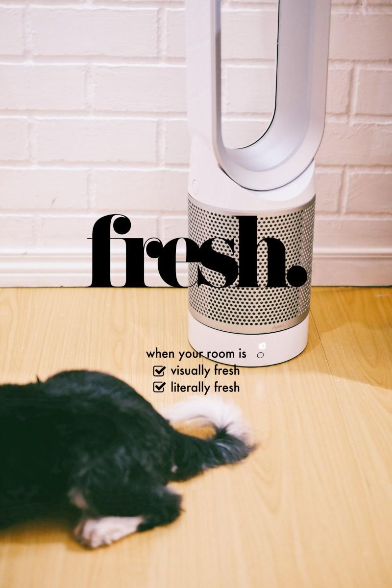@idaandu's cover photo for 'What Made My Room Fresher than Fresh'