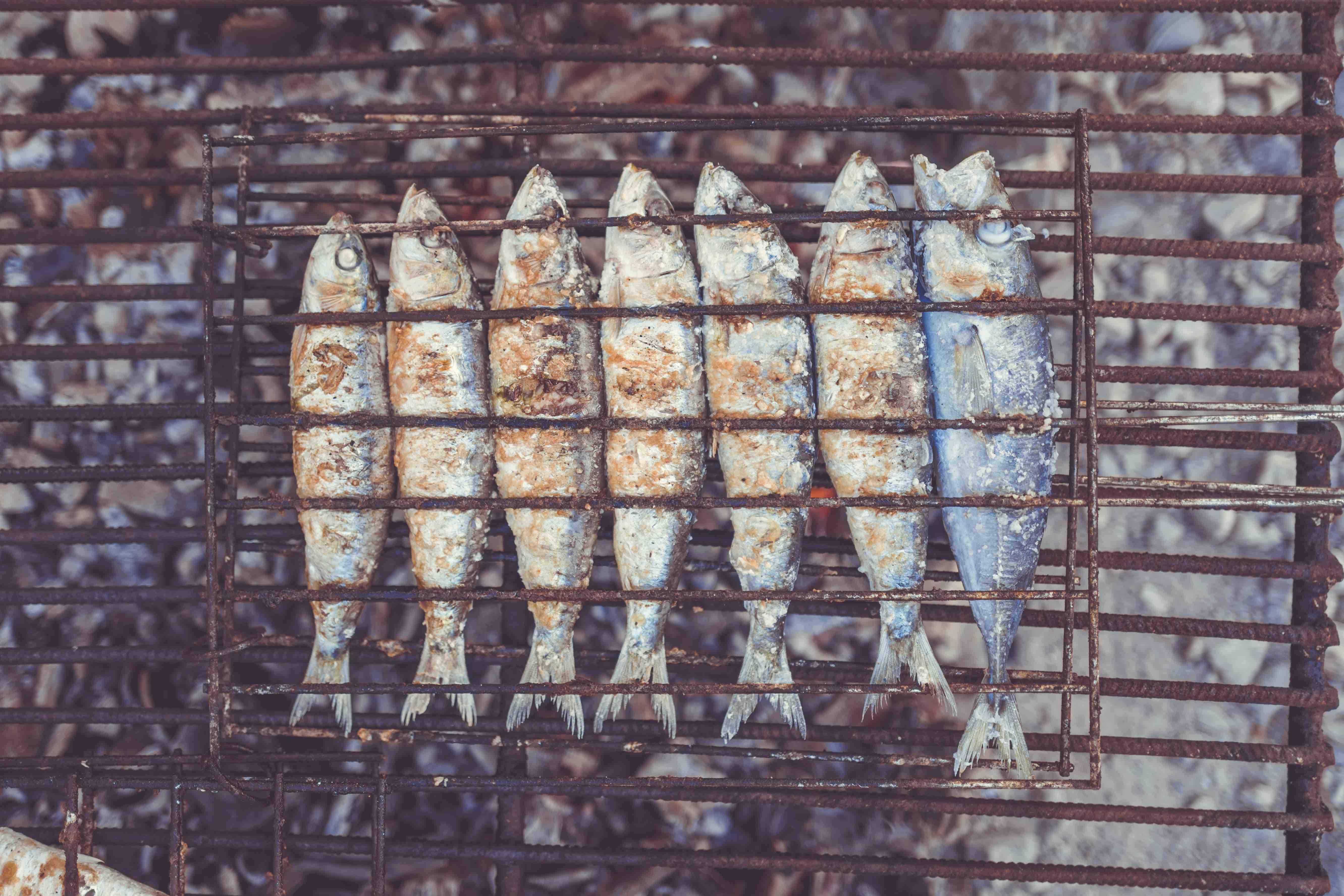 @acrushon___'s cover photo for 'Uma vez Foodie. Uma vez Zoman. Sempre. Sempre'