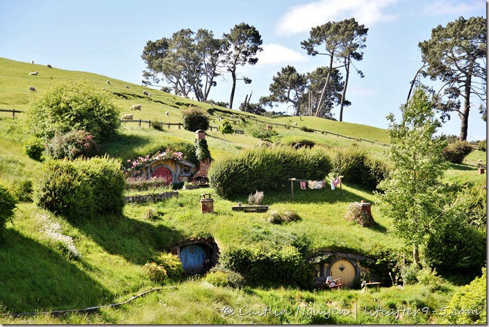 @lifeafter9to5's cover photo for 'New Zealand: Hobbiton'