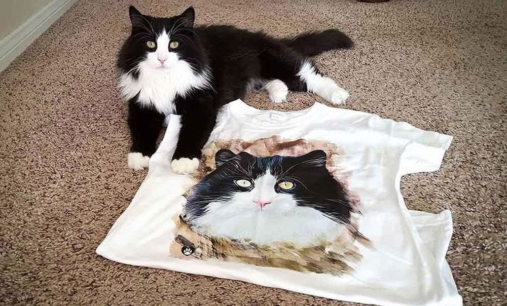 @thatcatblog's cover photo for 'Check Out Animal Hearted's NEW Cat-Tastic Clothing Line!'