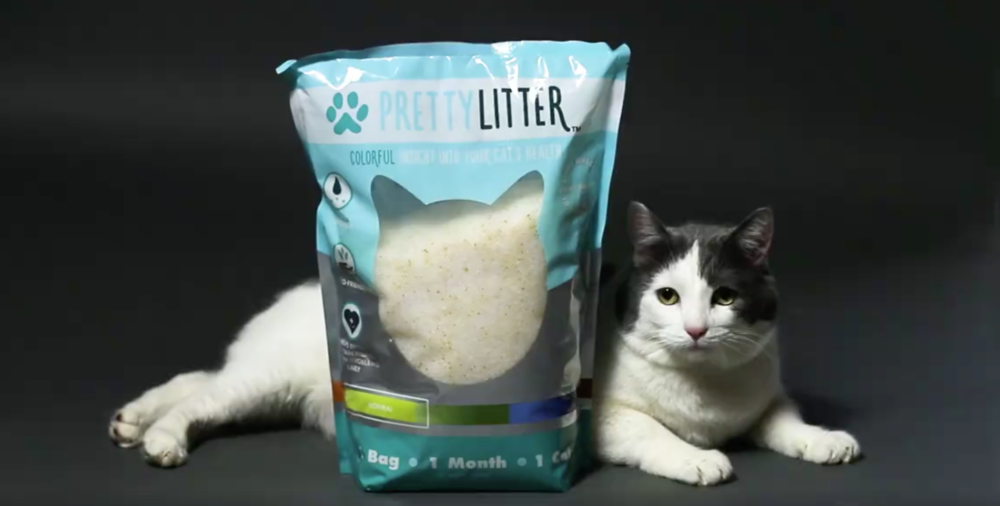 @thatcatblog's cover photo for 'New 'Pretty Litter' Can Help Monitor Your Cat's Health'