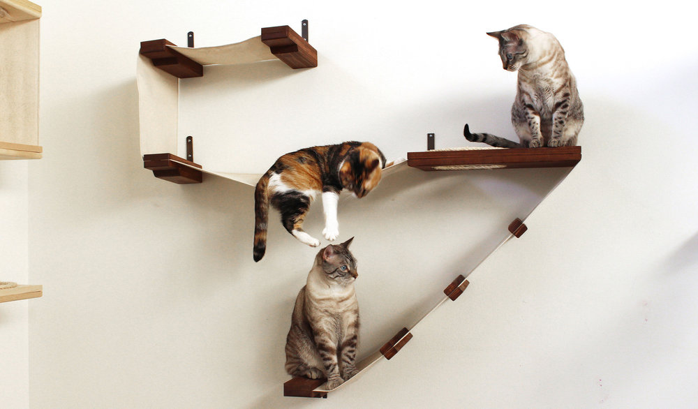 @thatcatblog's cover photo for 'CatastrophiCreations: Fun Furniture For Your Kitties!'
