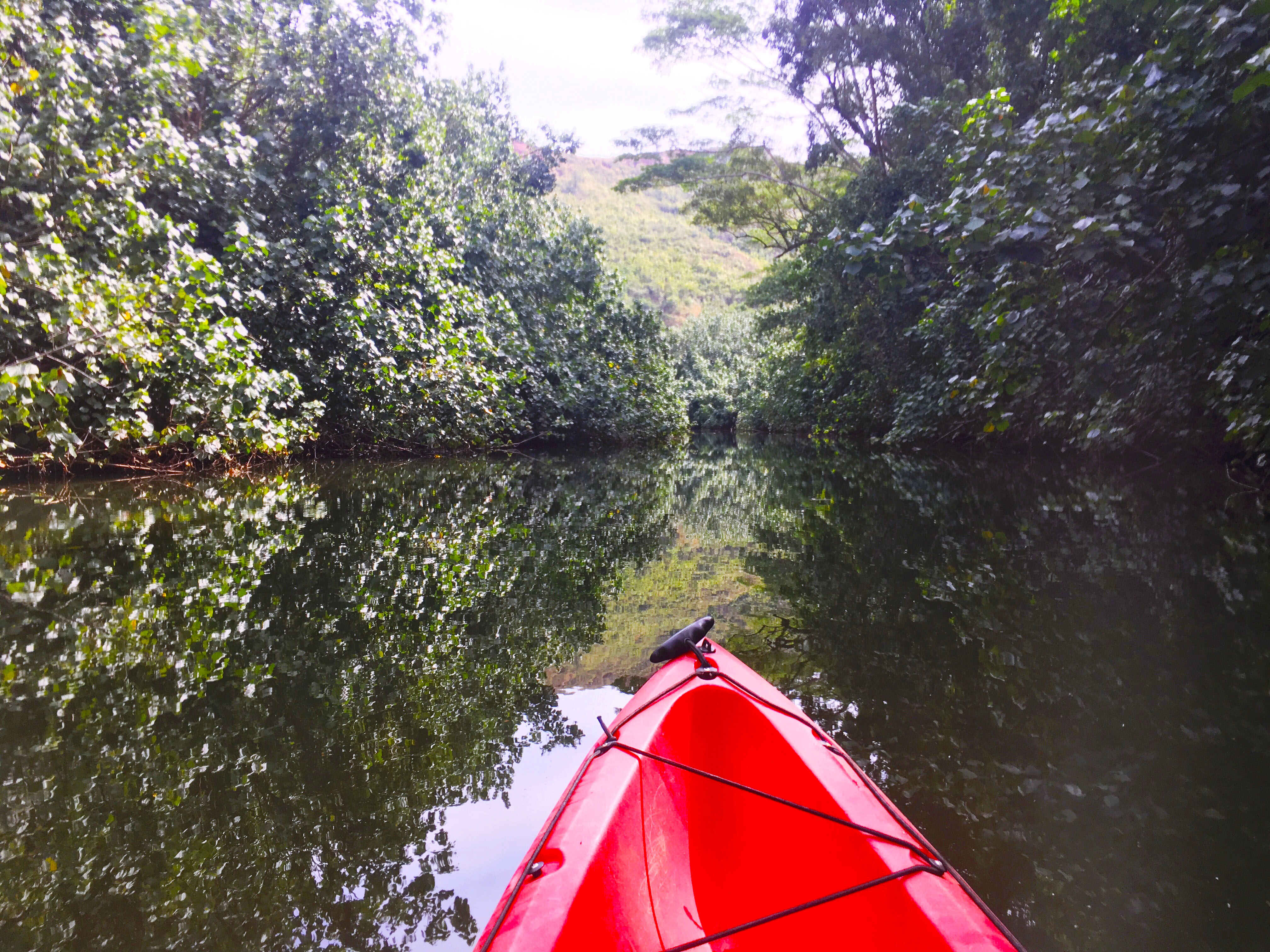 @eatwellexploreoften's cover photo for 'Exploring Kauai by Kayak - Eat Well, Explore Often'