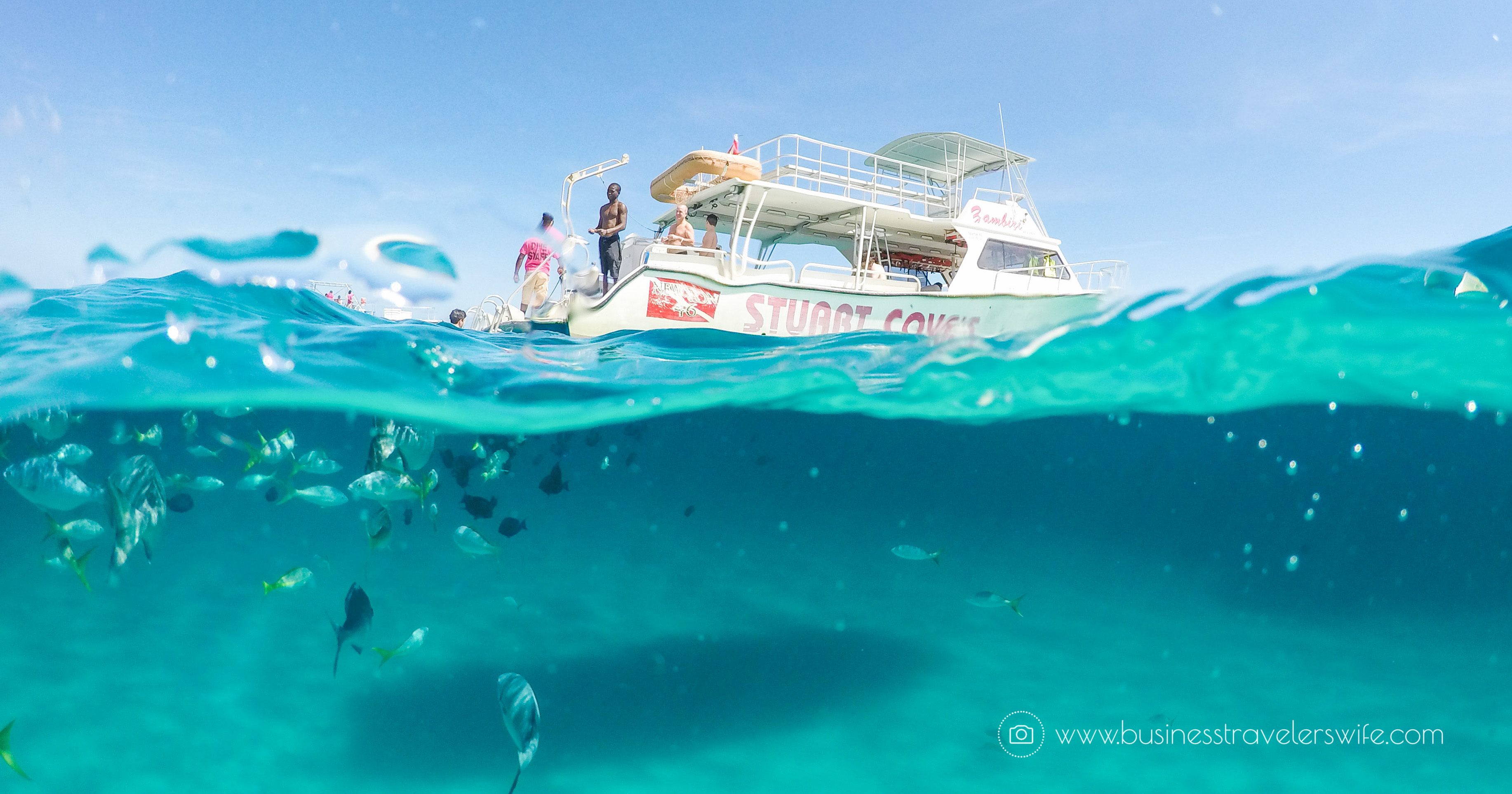 @businesstravelerswife's cover photo for 'Amazing Snorkeling Tour with Stuart Cove's Dive Bahamas'
