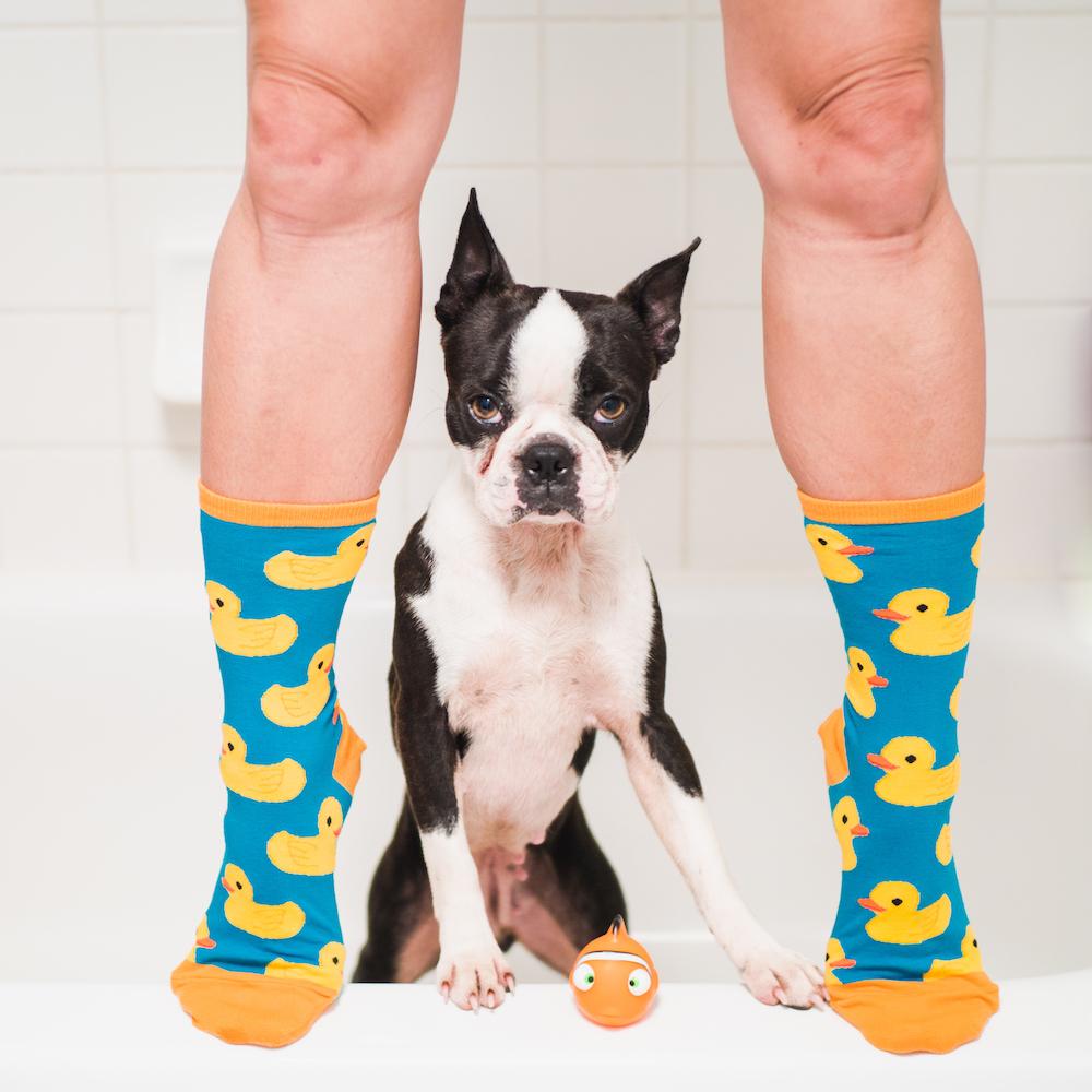 @maggielovesorbit's cover photo for 'No Boring Socks'