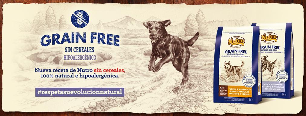 @pippa.thechihuahua's cover photo for 'Pienso sin cereales Nutro ¡al fin! ¡Y un súper concurso! - Pippa´s Garden'