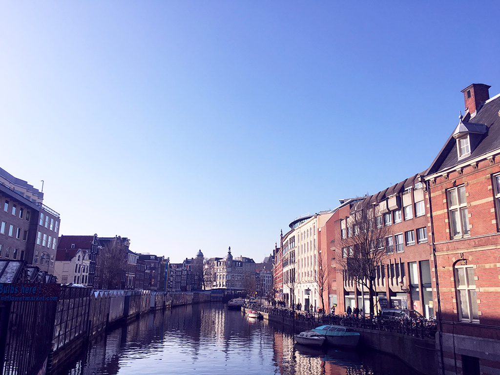 @iamlazykat's cover photo for 'Valentine's Day in Amsterdam - Lazy Kat'