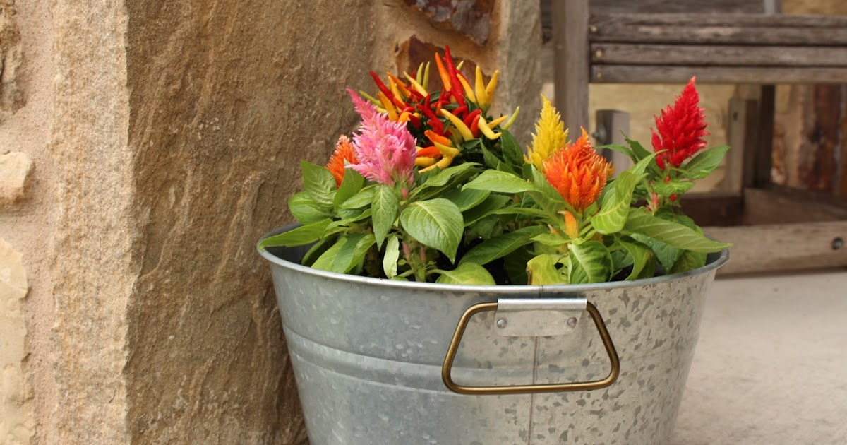 @morgankloesel's cover photo for 'Better Homes & Gardens® DIY Farmhouse Planter'