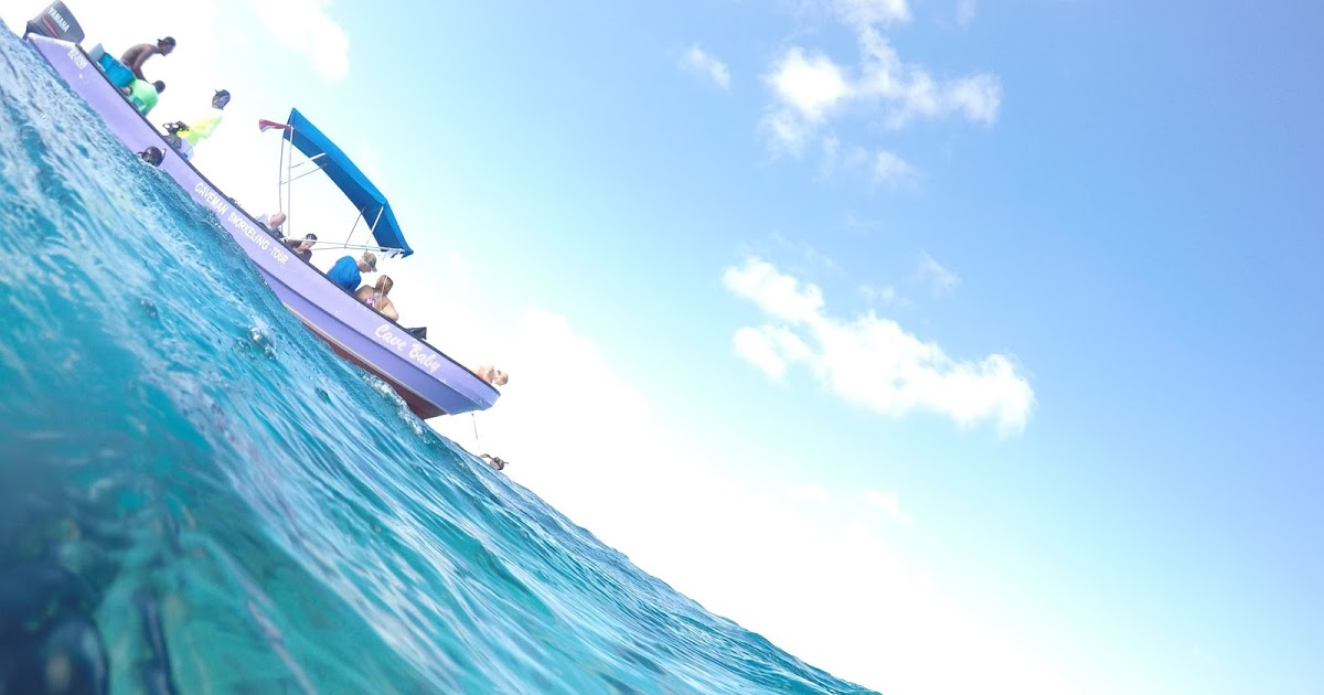 @morgankloesel's cover photo for 'A Guide To Belize: Snorkling Tours'