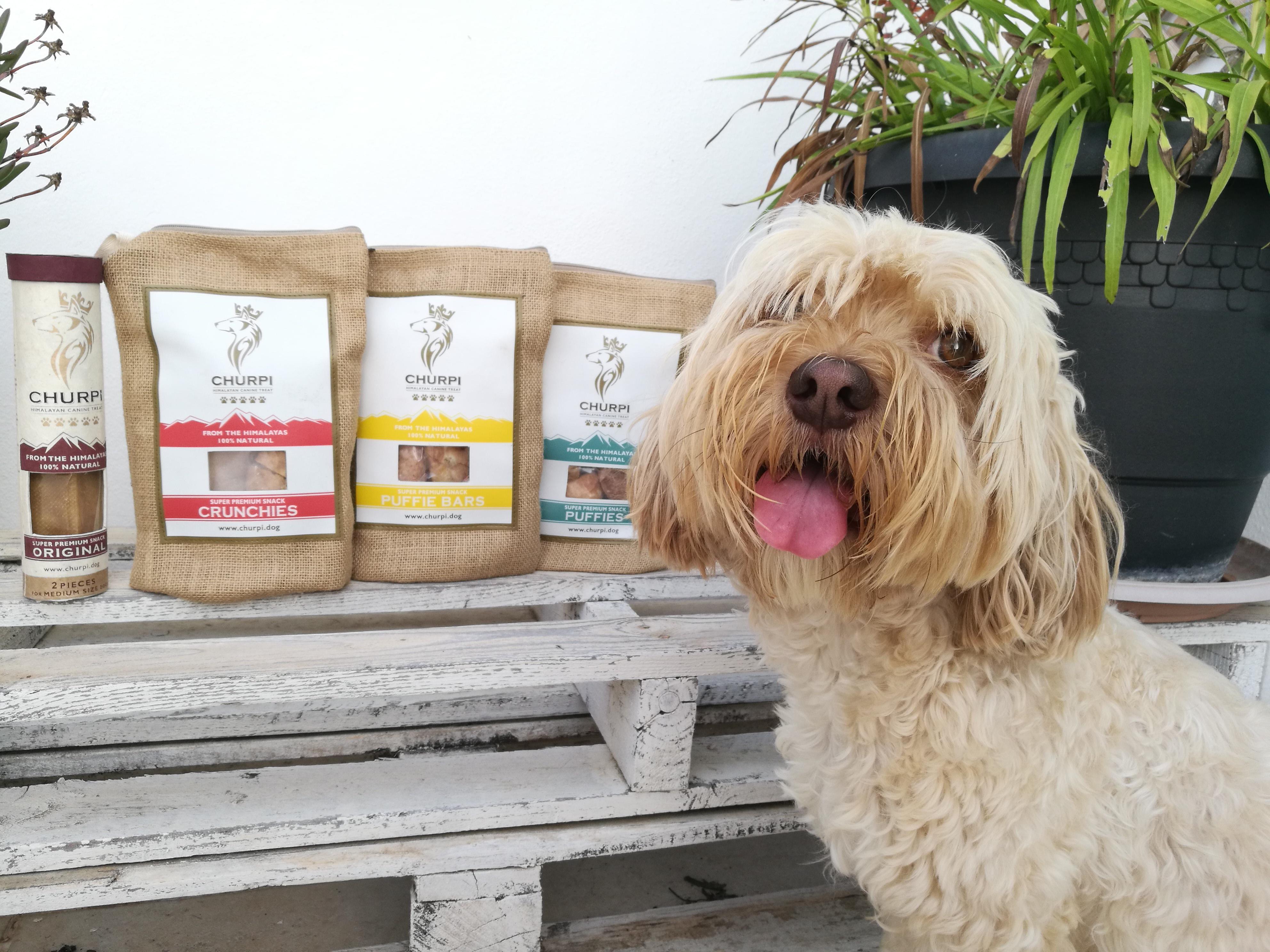 @blogdeuma's cover photo for 'Churpi Dog: un complemento alimenticio para perros súper premium 100% natural - El Blog de Uma'