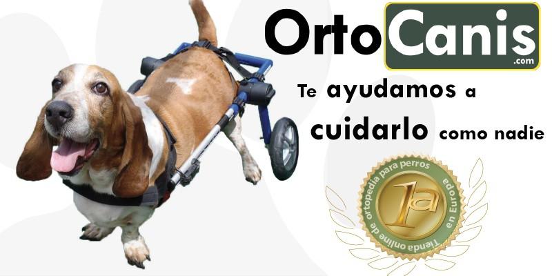 @blogdeuma's cover photo for 'Ortocanis, la ortopedia para tu perro - El Blog de Uma'