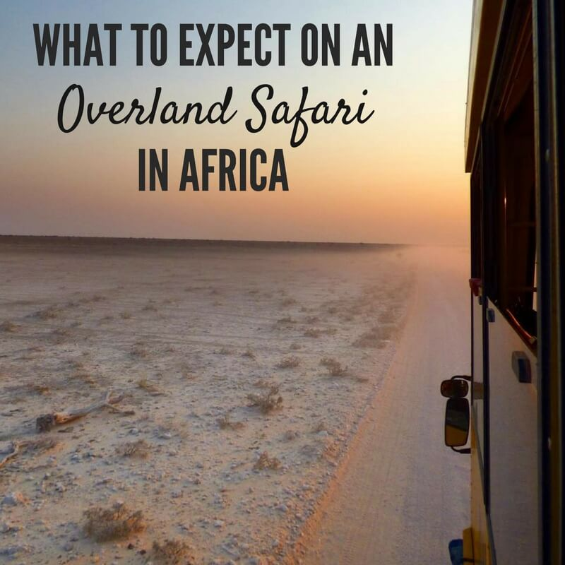 @maketimetoseetheworld's cover photo for 'What to Expect on an Overland Safari in Africa'