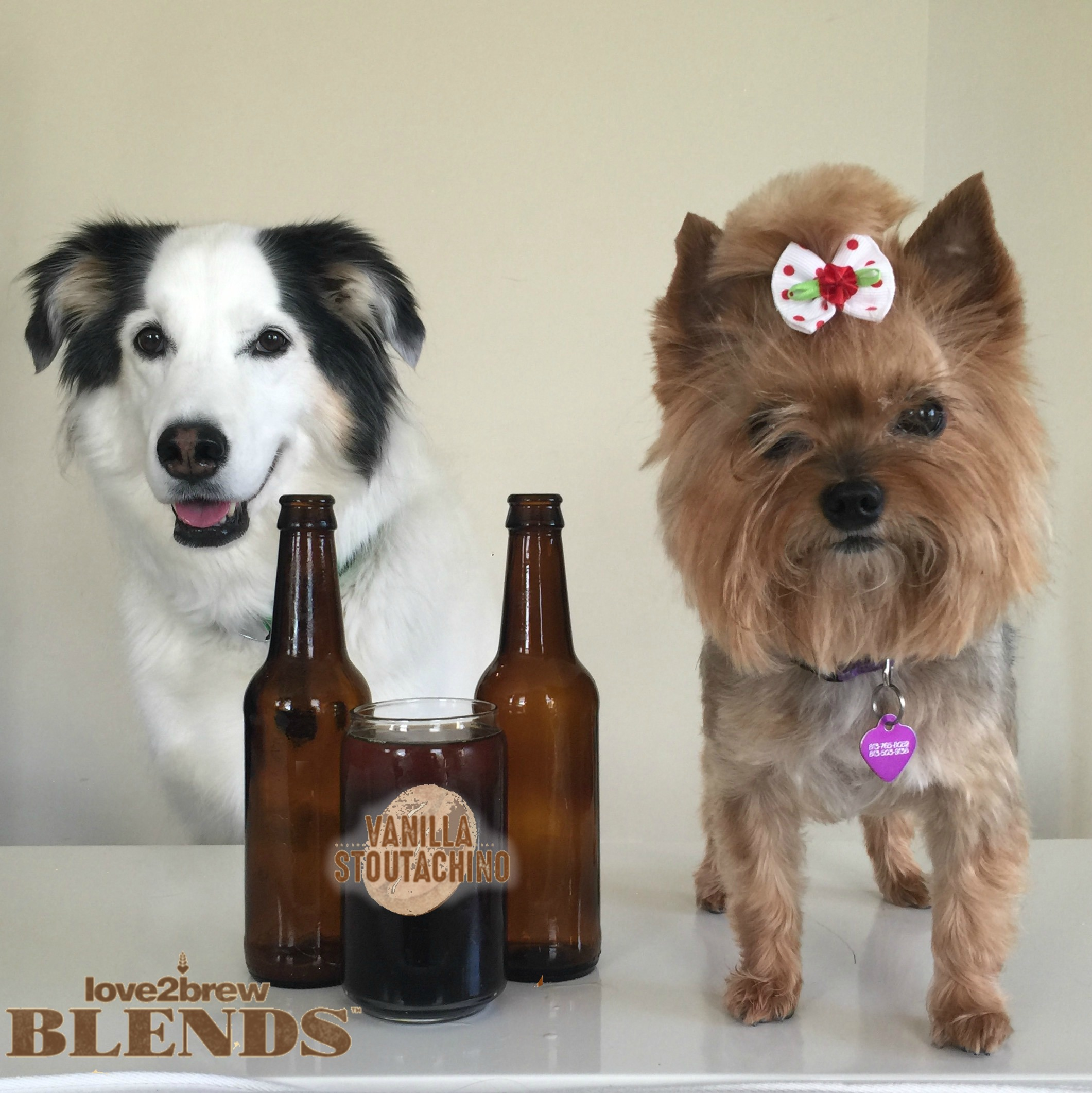@dogsontap's cover photo for 'Love2Brew Blends : Review • Dogs on Tap'