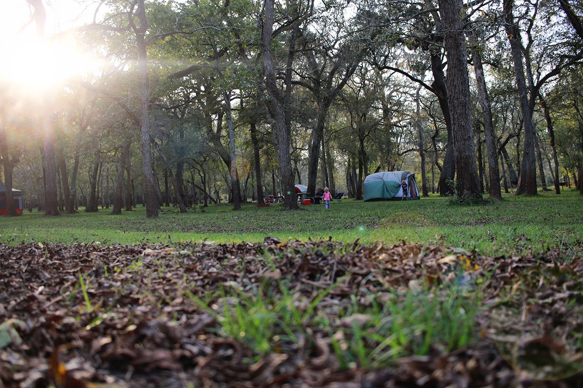 @itspamdel's cover photo for 'Camping in Brazos Bend State Park | It's Pam Del'