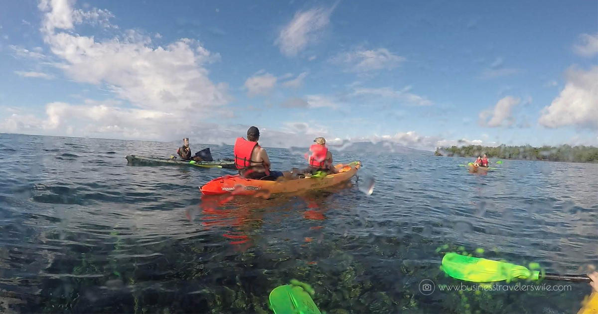 @businesstravelerswife's cover photo for 'Kayak and Snorkel Tour in Maui, Hawaii'
