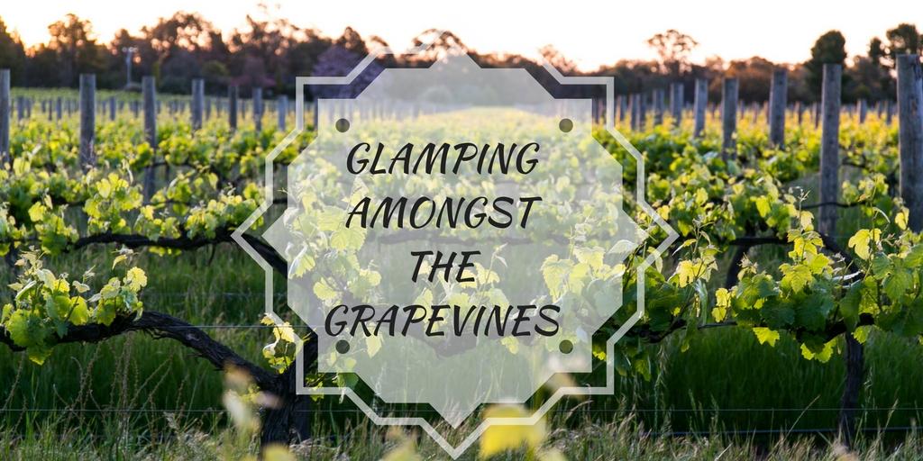 @honeybirdtravel's cover photo for 'Glamping Amongst the Grapevines - Traveling Honeybird'