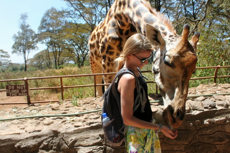 @s_marga's cover photo for 'How to Choose Ethical Animal Attractions Abroad - Passion Passport'