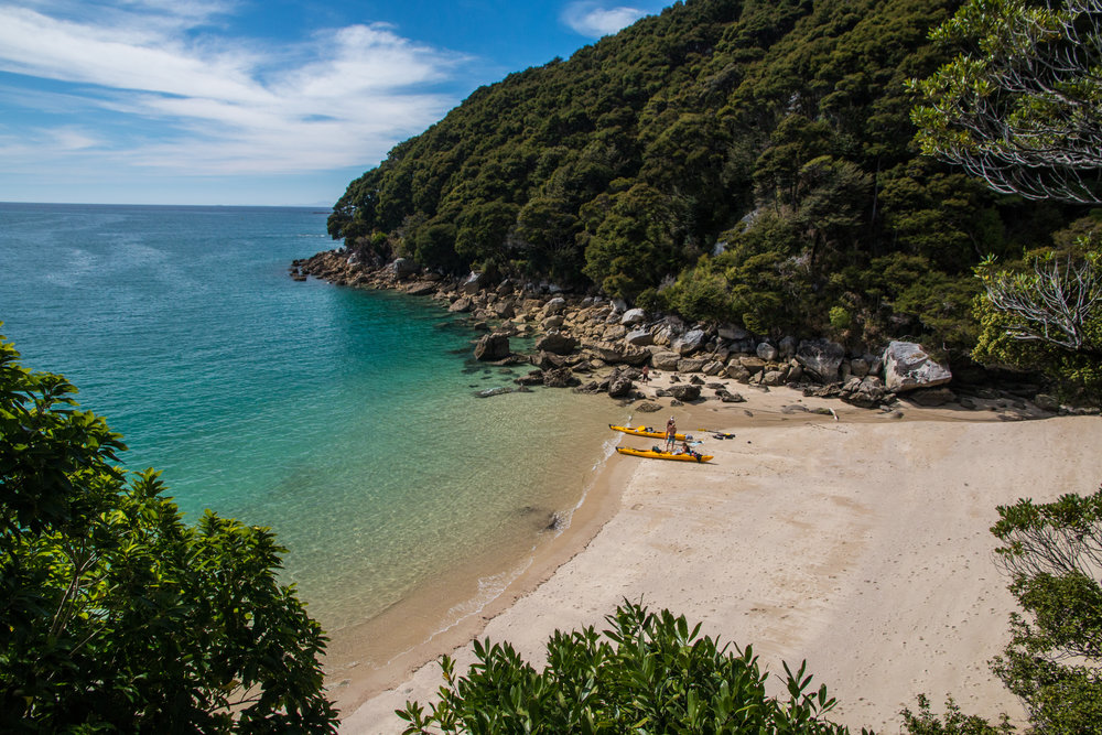 @foreverchasingwanderlust's cover photo for 'Abel Tasman National Park by sea shuttle, the best way to explore the park'