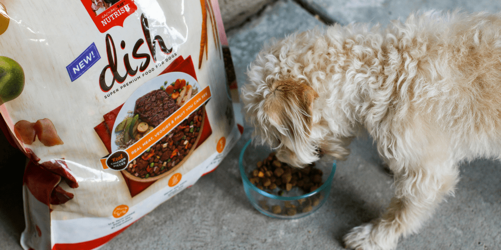 @socalfieldtrips's cover photo for '5 Ways To Nourish Your Relationship With Your Dog'